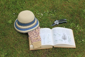 Photo of secateurs, pruning manual, sunhat and gloves, lying on the grass.
